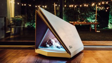 Photo of Ford's dog kennel has noise-canceling to take the fear out of fireworks