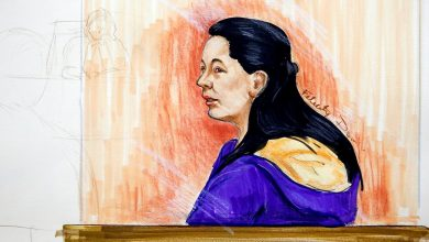 Photo of In Canadian court, Huawei CFO's lawyer raises Trump comments on case