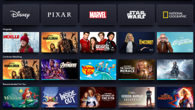 Photo of Disney Plus: Every show, movie, original and surprise release to come
