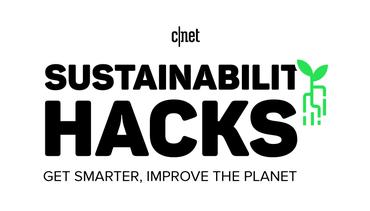 sustainability-hacks-bug.png
