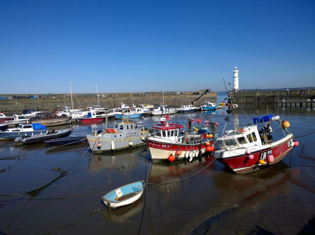 harbour-lumia-1020