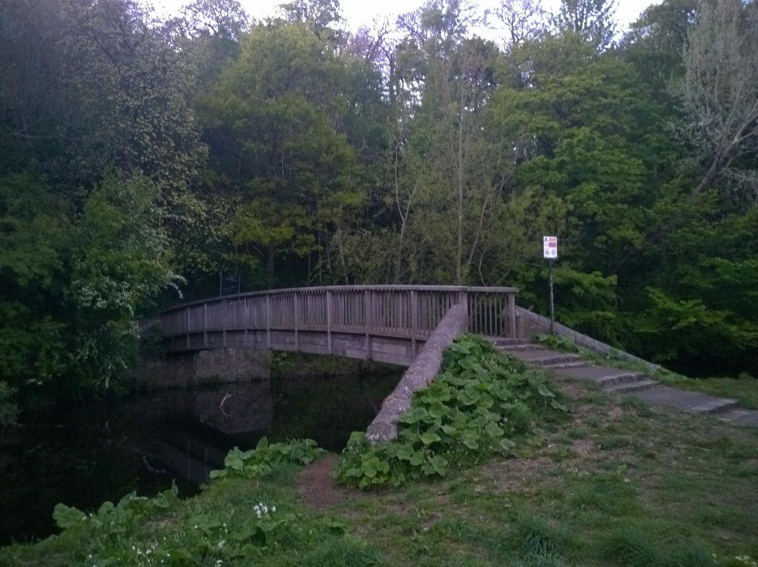 bridge-lumia-1020