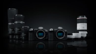 Photo of Canon EOS R5 and R6: 8K video and incredible stabilization