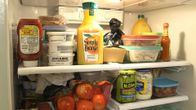 Photo of Fix a leaking fridge and other common refrigerator problems. Here's how