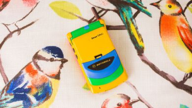 Photo of I snagged this rare edition rainbow phone. It originally cost $1,000. And all it did was flip
