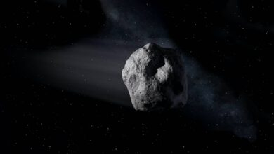 Photo of Large Asteroid to Fly Past Earth on July 24: NASA