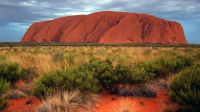 Photo of Google removes Uluru virtual walk from Street View