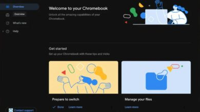 Photo of Chrome OS may well lastly be receiving a dark mode